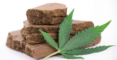 Types of Hash Your Guide to the Different Kinds
